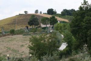 ascolano_0022
