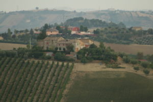 ascolano_0040