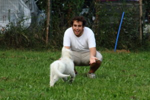 pastore svizzero bianco dexter 0078